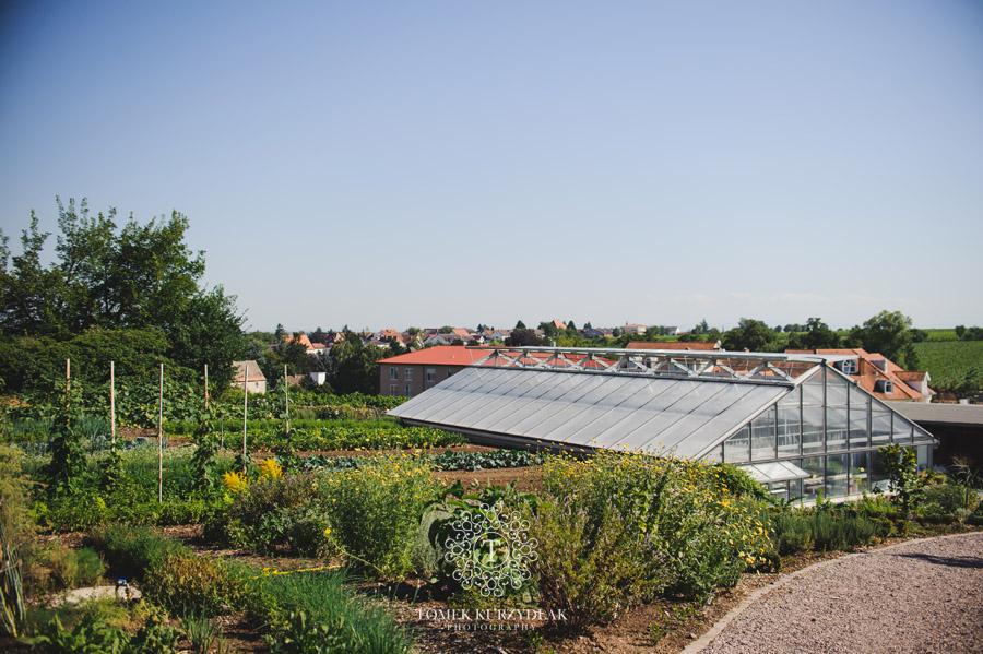 Kräutergarten der Klostermühle Edenkoben